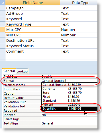 Microsoft Access Field Format for Scientific Notation